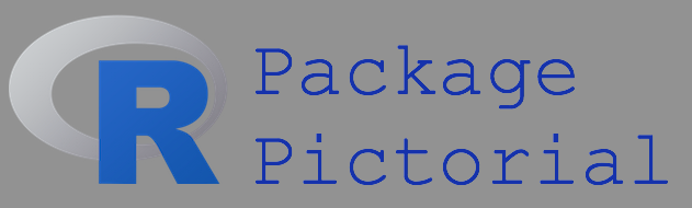 R Package Development Pictorial